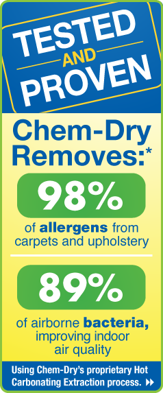 Upholstery Clean